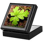 Poison Oak Keepsake Box