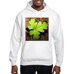 Poison Oak Hooded Sweatshirt