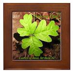 Poison Oak Framed Tile
