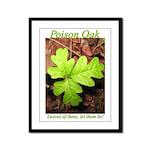 Poison Oak Framed Panel Print