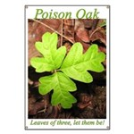 Poison Oak Banner