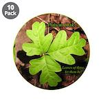 Poison Oak 3.5