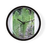 Horsetail Equisetum Wall Clock
