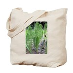 Horsetail Equisetum Tote Bag