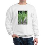 Horsetail Equisetum Sweatshirt