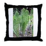 Horsetail Equisetum Throw Pillow