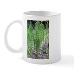 Horsetail Equisetum Mug