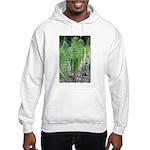 Horsetail Equisetum Hooded Sweatshirt