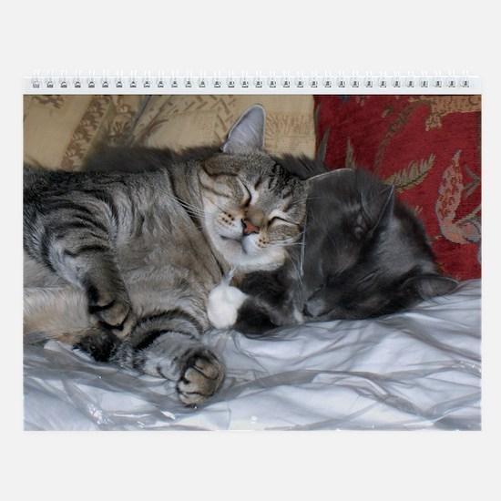 Cat Luv Wall Calendar