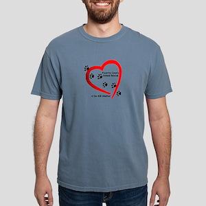 FCAR Logo 2011 T-Shirt