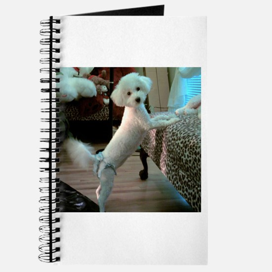 DAISY DUKE WAGGING MY TAIL FOR YOU JOURNAL