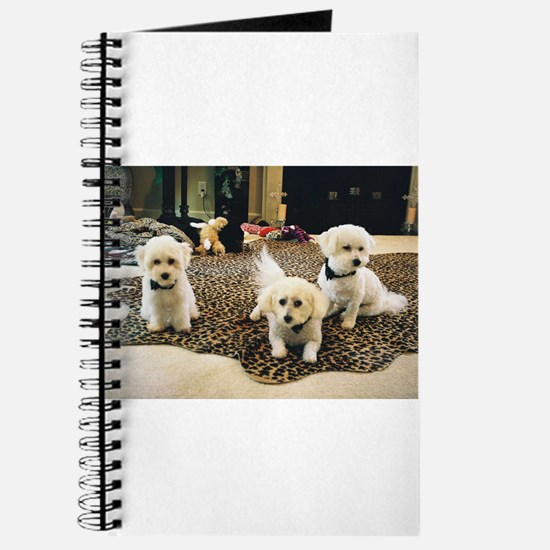 BLACK TIE BICHONS JOURNAL