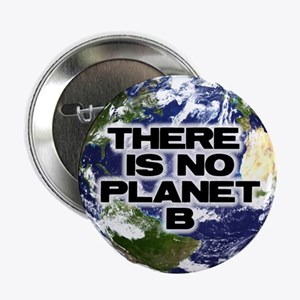 "No Planet B 2.25"" Button"