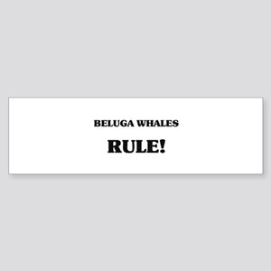 Beluga Whales Rule Bumper Sticker