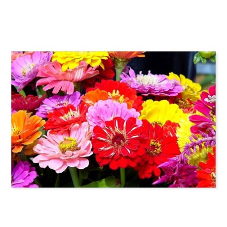 Postcards (Package of 8) - Zinnias