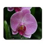 Flower 2 mousepad