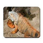 Red lizzard mousepad