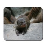 Fury Creature 1 mousepad
