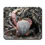 Land crab mousepad