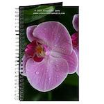 Pink flower Journal