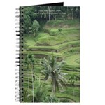 Bali ricefield Journal