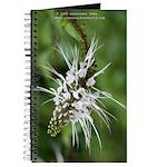 Flower 4 Journal