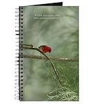 Red bird Journal