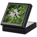 Flower 4 Tile Box