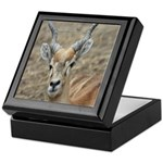 Deer 1 Tile Box