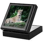 Lion Tile Box