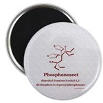 Molecularshirts.com Phosphonosect Magnet