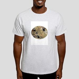 Explore Historic California Tour Logo Light T-Shir