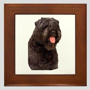 Bouvier Des Flandres Dog Framed Tile