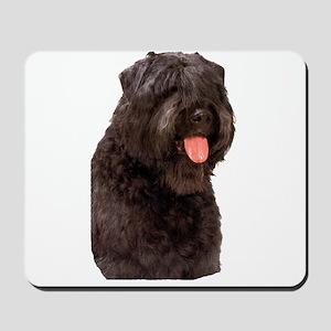 Bouvier Des Flandres Dog Mousepad