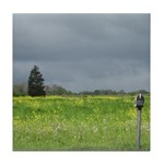 Mailbox and Field Scenic Tile Coaster
