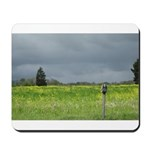 Mailbox and Field Scenic Mousepad