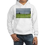 Mailbox and Field Scenic Hooded Sweatshirt