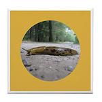 Banana Slug in Forest Tile Coaster