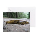 Banana Slug in Forest Greeting Cards (Pk of 10)