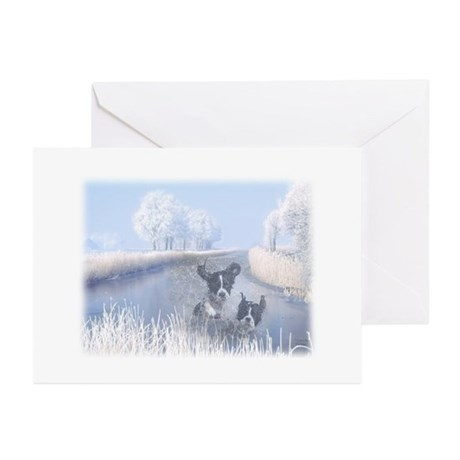 Pet Sympathy Cards (Pk of 10) Greeting Cards