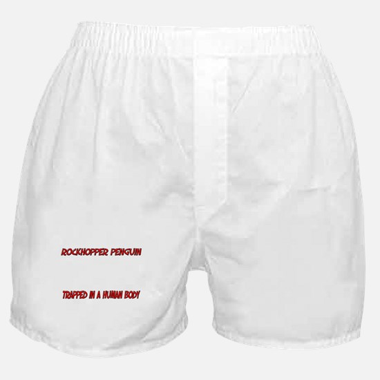 Rockhopper Penguin trapped in a human body Boxer S
