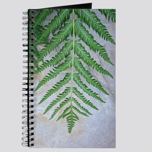 Fern Journal