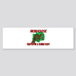 Mongoose trapped in a human body Bumper Sticker