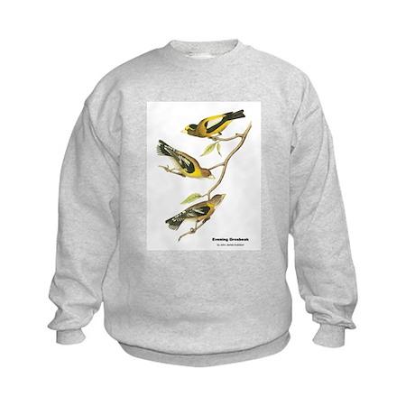 Audubon Evening Grosbeak Birds Kids Sweatshirt