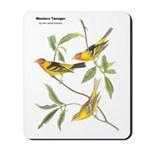 Audubon Western Tanager Birds Mousepad