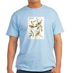 Audubon Western Tanager Birds Light T-Shirt