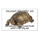 Valuable Pet Lesson #6 Rectangle Sticker 50 pk)