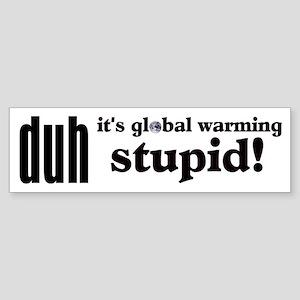 Duh, IT'S GLOBAL WARMING STUPID! Bumper Sticker