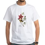 Audubon Troupial Birds (Front) White T-Shirt