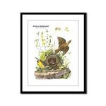 Audubon Eastern Meadowlark Birds Framed Panel Prin